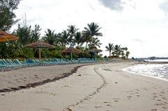 cococay bahamas Fotografering för Bildbyråer