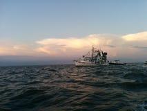 Cocodrie Louisiana stock photo