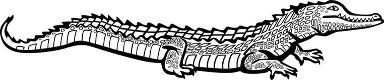 Cocodrilo ilustración del vector