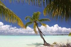 Cocoen gömma i handflatan på lagunstranden för blått vatten Fotografering för Bildbyråer
