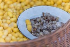 Cocon de ver à soie dans le panier Image libre de droits