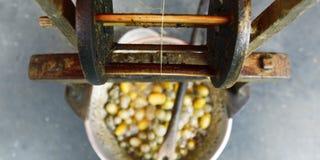 Cocon en soie Photo stock