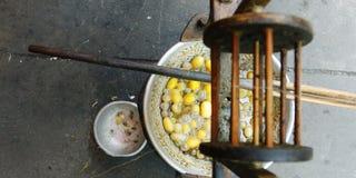 Cocon en soie Images stock