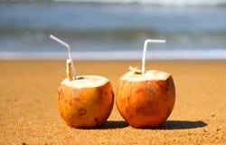 Coconat do céu e do oceano Imagem de Stock Royalty Free