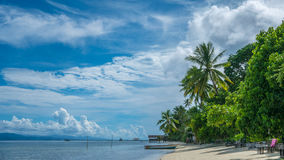 Coconat Palm on Kri Island, Homestay and Pier in Background. Raja Ampat, Indonesia, West Papua.  Royalty Free Stock Photos