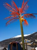 Coconat palm tree plastic in the Italian mountains Stock Photo