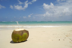 Coconot drink Royalty Free Stock Images