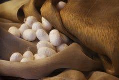 Cocons et soie Photos stock
