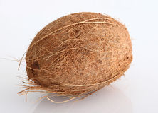 Coconut. Nature coconut in white background Royalty Free Stock Photography