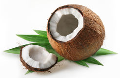 Free Coconut Royalty Free Stock Photography - 12187957