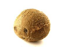 Coconut. A single coconut on white background Royalty Free Stock Images