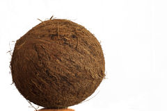 Coconut. Closeup on white background Stock Photography