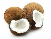 Free Coconut Stock Image - 16899201
