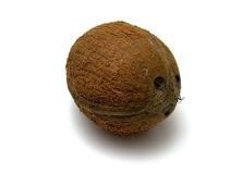 Coconut 2. Close-up view of coconut against white background royalty free stock images
