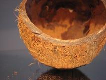 Coconut 2 Stock Photography