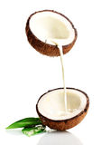 Coconut. With  milk  on white Stock Photo