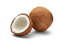 Free Coconut Stock Images - 28010134