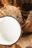 Coconut. Fresh and white coconut with brown shell Royalty Free Stock Image