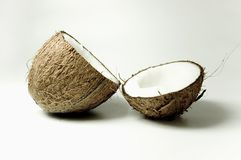 Coconut 3. Coconut on the table stock photography