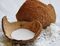 Free Coconut Stock Photography - 31370712