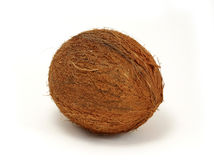 Coconut. Isolated coconut over white background Royalty Free Stock Image