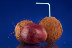 Coconut Stock Photography