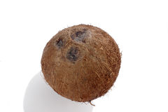 Coconut. Whole coconut stock images