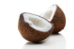 Coconut Royalty Free Stock Image