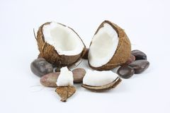 Coconut. Split in two half\'s laying on bed of stones Stock Image