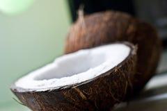 Coconut-1 Fotografering för Bildbyråer