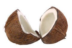 Coconut. Isolated on white background Royalty Free Stock Images