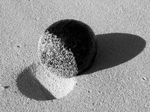 Coconut Abstract in Black and White Royalty Free Stock Photos