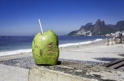 Coconut against Ipanema Beach, Rio de Janeiro Stock Image