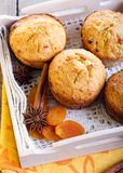 Coconut and apricot muffins Royalty Free Stock Photos
