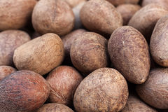Coconut background Stock Photos
