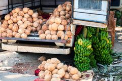 Coconut and Banana Retail Seller on Truck stock photo