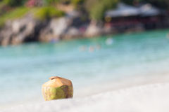 Coconut beach Royalty Free Stock Photo