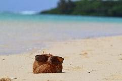 Coconut on beach. A coconut sunning itself in sunglasses on Muri Beach in the Cook Islands Royalty Free Stock Photo