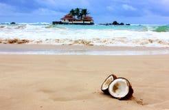 Coconut on the beach. Broken coconut on the beach Royalty Free Stock Photos