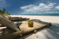 Coconut on the beach Royalty Free Stock Photo