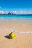 Coconut on the beach. Fresh coconut drink on tropical white sand beach Stock Image