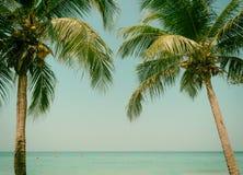 Coconut beach sea sky in the summer of the holiday vintage. Chanthaburi Thailand Stock Photos