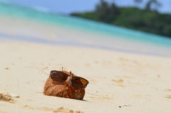 Coconut on beach. A coconut sunning itself in sunglasses on Muri Beach in the Cook Islands Royalty Free Stock Images