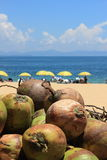 Coconut in the beach Royalty Free Stock Photo