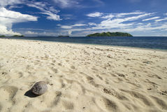 Coconut on beach with view of Tavua Island, Mamanuca Group, Fiji Stock Photo