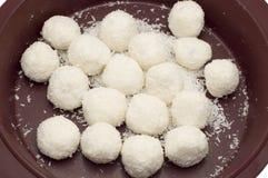 Coconut biscuit Stock Photos