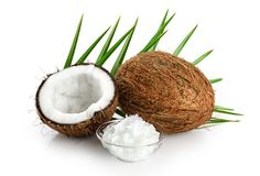 Coconut and bowl with coconut oil isolated on white background. Palm leaf Stock Image