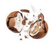 Coconut broken in the air into two halves.  royalty free stock photography