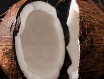Coconut broken in half Royalty Free Stock Photography