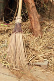 A coconut broom with bamboo tree in nature. Stock Photography